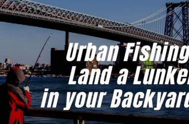 Urban Fishing: Land a Lunker in Your Backyard. The Why, How and Where of Fishing in the Big City